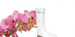Custom Foot Wear